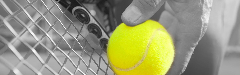 Sport Schwab Tennis-Service